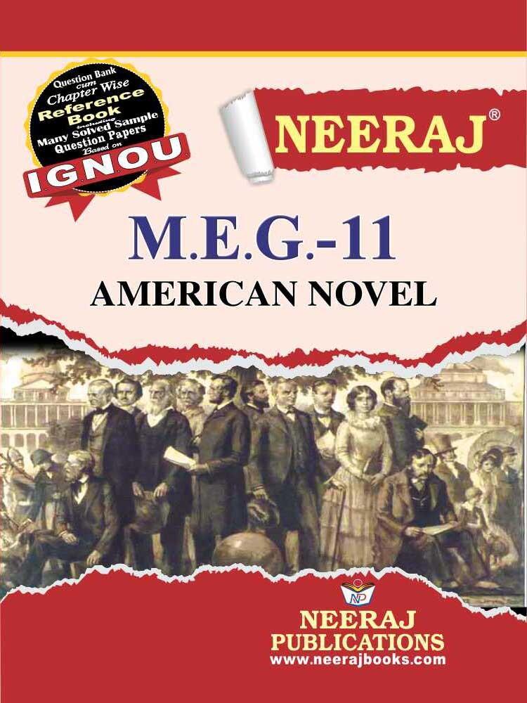 American Novel