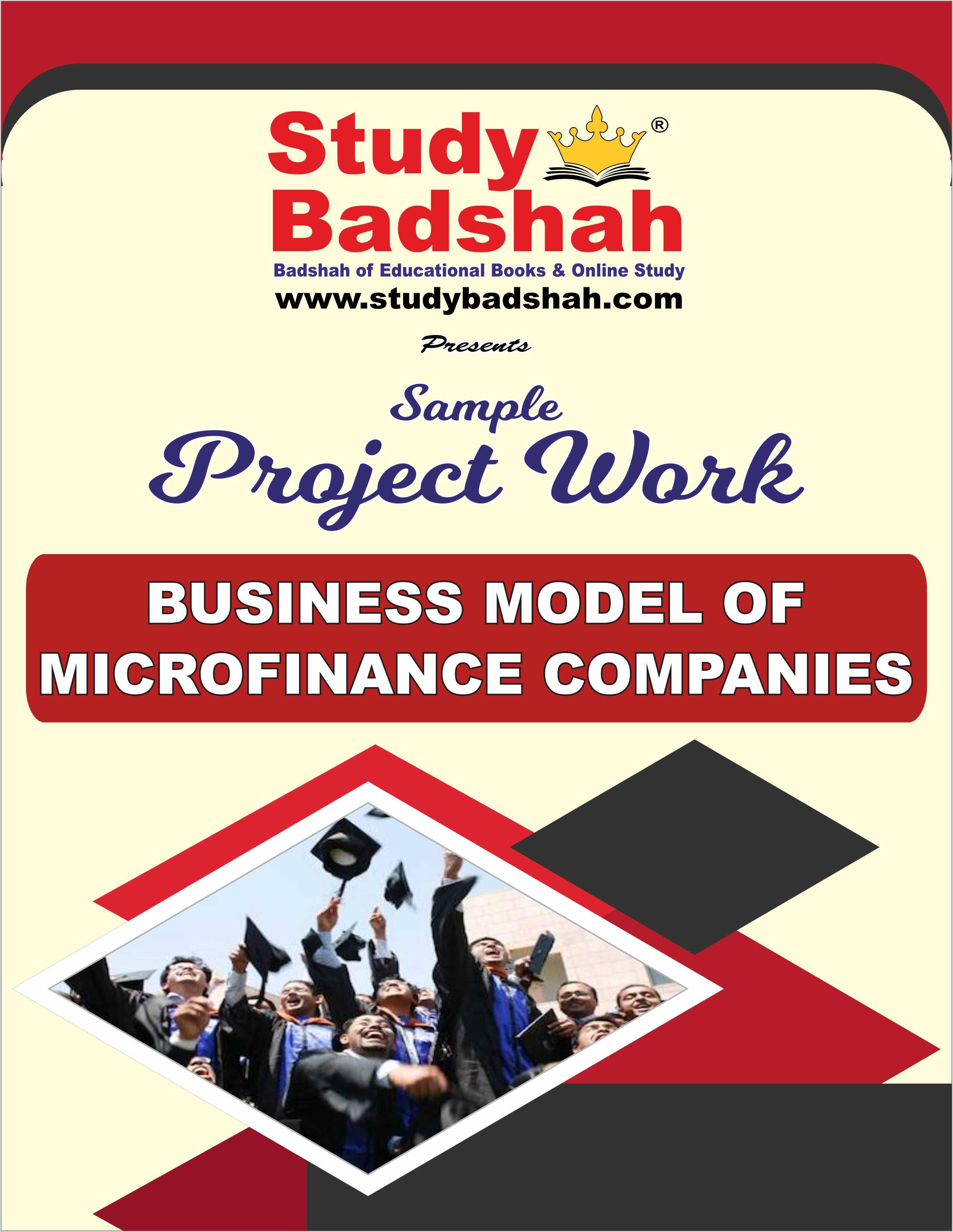 Business Model of Microfinance Companies